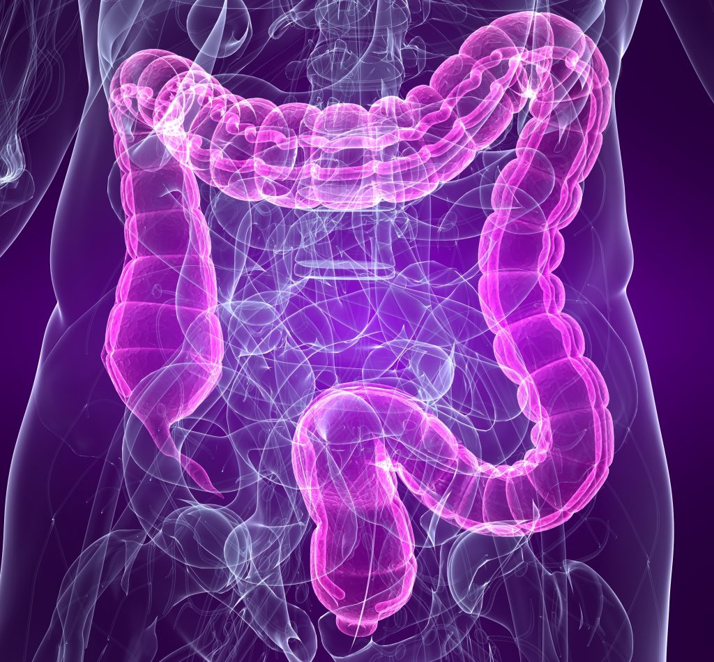 Graphic of large intestine